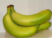 Bananas 1 250 pixels